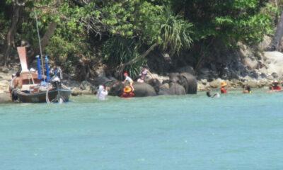 สบทช.9 ลงตรวจสอบ หลังโซเชี่ยลวิจารณ์คลิปนำช้างลงเล่นน้ำ ถ่ายภาพกับนทท.หน้าหาดไตรตรัง | The Thaiger