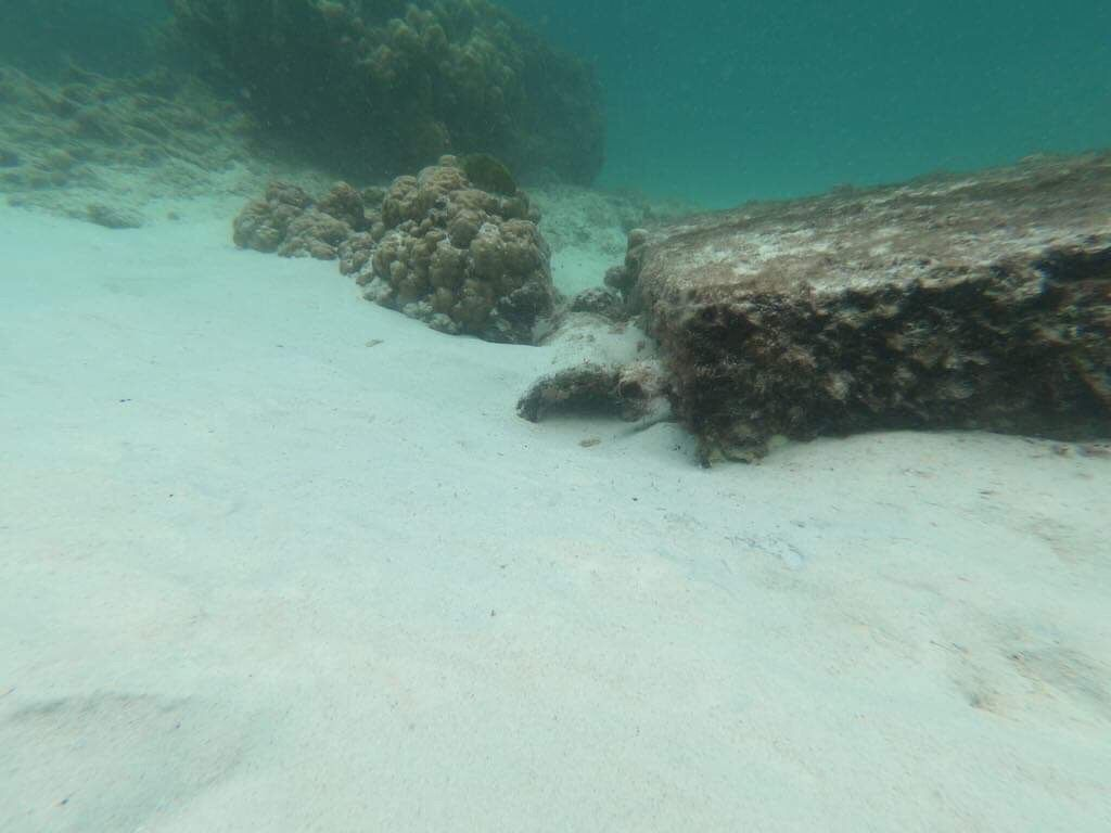 An 'ancient cannon' found underwater off Koh Racha Noi | News by The Thaiger