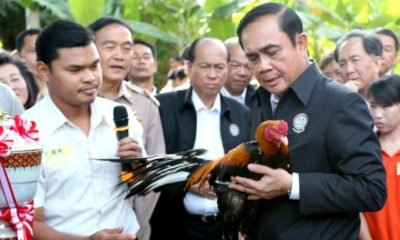 Thai PM takes flack from social media over his Animal Farm recommendation | The Thaiger