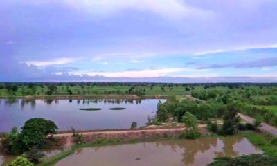 Summer storms forecast for the central and north of Thailand | The Thaiger