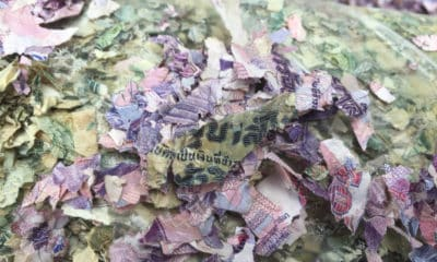 Dumped shredded Thai baht notes found on the Trat roadside | The Thaiger