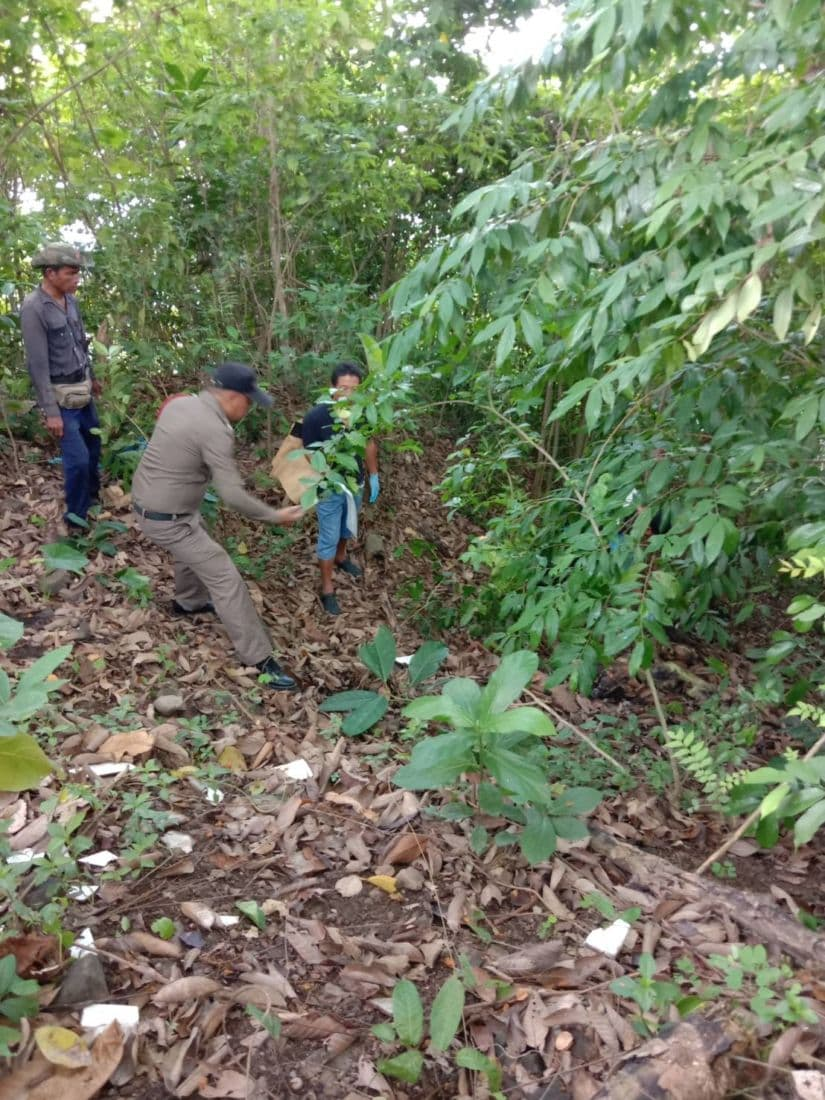 Body of 24 year old found in Wichit forest, Phuket   News by Thaiger