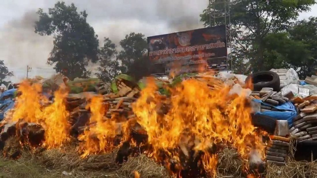 75 tonnes of marijuana and Kratom destroyed in Nakhon Phanom | The Thaiger