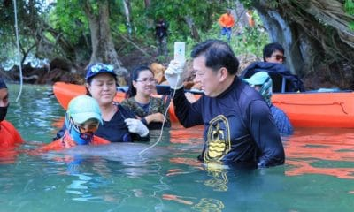 Baby dugong 'Marium' being cared for in Trang | Thaiger