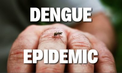 """Thailand's dengue fever cases """"double the five year average"""" – epidemic declared 