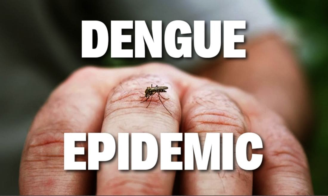 "Thailand's dengue fever cases ""double the five year average"" – epidemic declared 