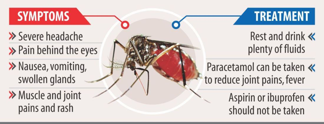 Thailand's dengue fever cases