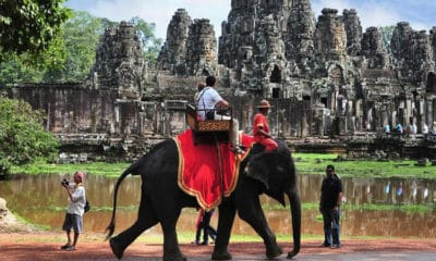 Elephant rides to be banned around Angkor Wat in Siem Reap | The Thaiger