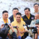 National agenda will be prepared for dugong conservation in Thailand | The Thaiger