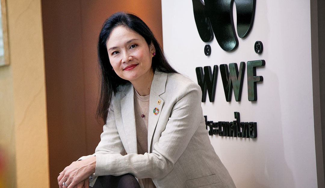 WWF Thailand pushes for sustainable tourism and preservation | News by Thaiger