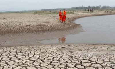No rain in sight, eight Thai provinces on verge of water crisis | The Thaiger