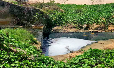 """Cha-Am blackwater flowing into the beach is """"natural in origin"""" – District Chief 