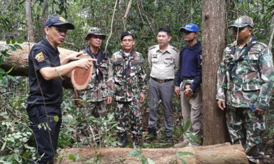 Illegal forest poachers resorting to landmines to scare off rangers in Thailand's east   Thaiger