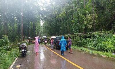 Tropical storm Wipha causes landslides in Tak | Thaiger