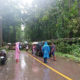 Tropical storm Wipha causes landslides in Tak | Thaiger