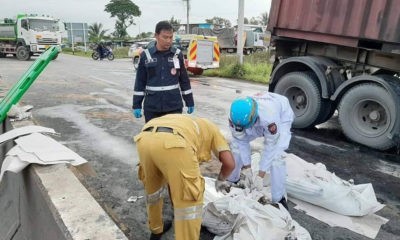 Two people and 1,000 chickens die in Pathum Thani collision | Thaiger