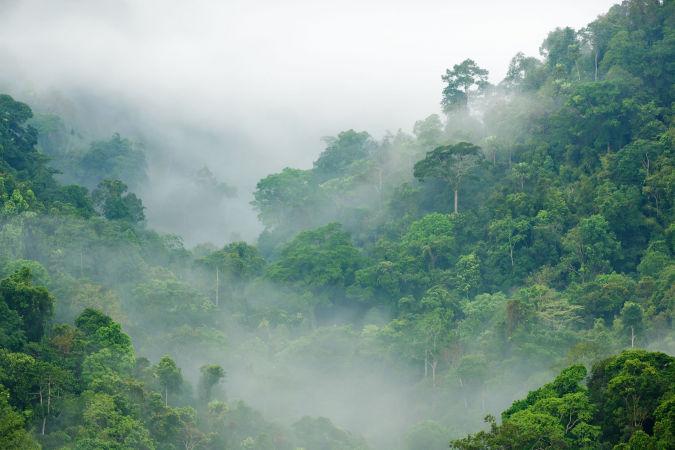 Thai's go west during rainy season - study   News by Thaiger