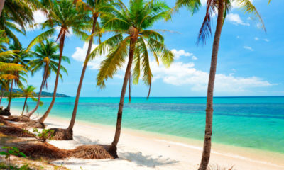 Koh Samui looks to promotions to bolster dwindling foreign tourist numbers | Thaiger