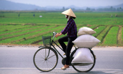 The road to Vietnam   The Thaiger
