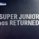Super Junior กลับมาแล้ว!!   The Thaiger