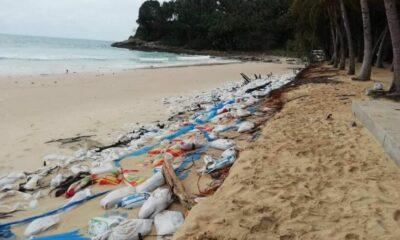 Phuket's Surin Beach's anti-erosion walls fails causing another environmental disaster | Thaiger