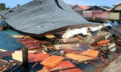 UPDATE: Maluku Island quake toll rises to 23   Thaiger