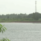 Dam contaminated with heavy metals in Chachoengsao | Thaiger