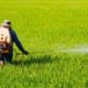 Three toxic farm chemicals to be banned from December 1 | Thaiger