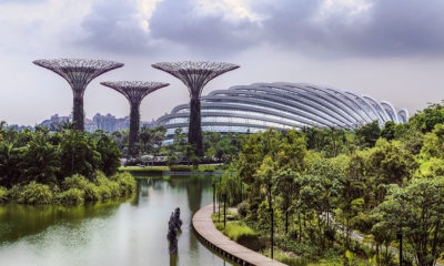 Gardens by the bay – Singapore's horticultural showcase | The Thaiger