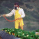 New controls on three toxic agri-chemicals take effect on October 20 | Thaiger