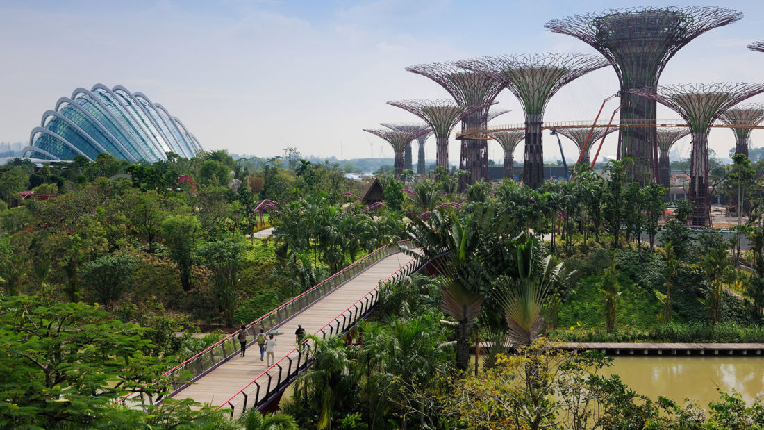 Gardens by the bay - Singapore's horticultural showcase   News by Thaiger