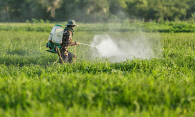US pushing for delay to Thai ban on glyphosate in order to protect imports | The Thaiger
