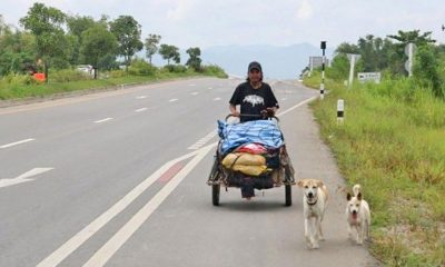 Grieving husband on a mission to take his wife's ashes to all the places she longed to see   The Thaiger