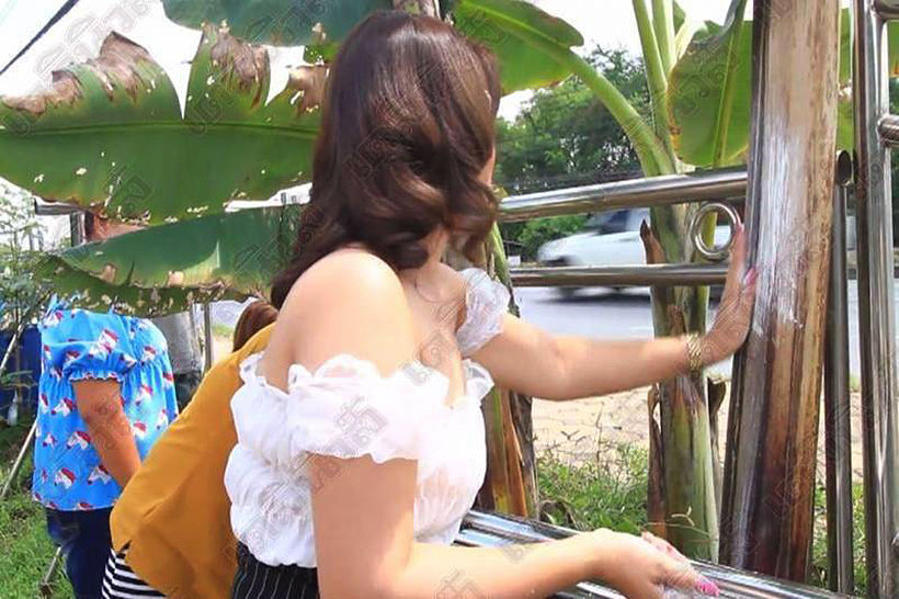 Thais go bananas over freak plants in pursuit of lottery numbers   News by Thaiger