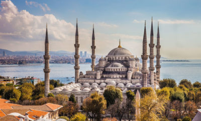 How Much Does a Hair Transplant in Turkey Cost? | The Thaiger
