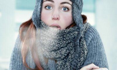 Điều gì sẽ xảy ra cho cơ thể khi quá lạnh? | The Thaiger