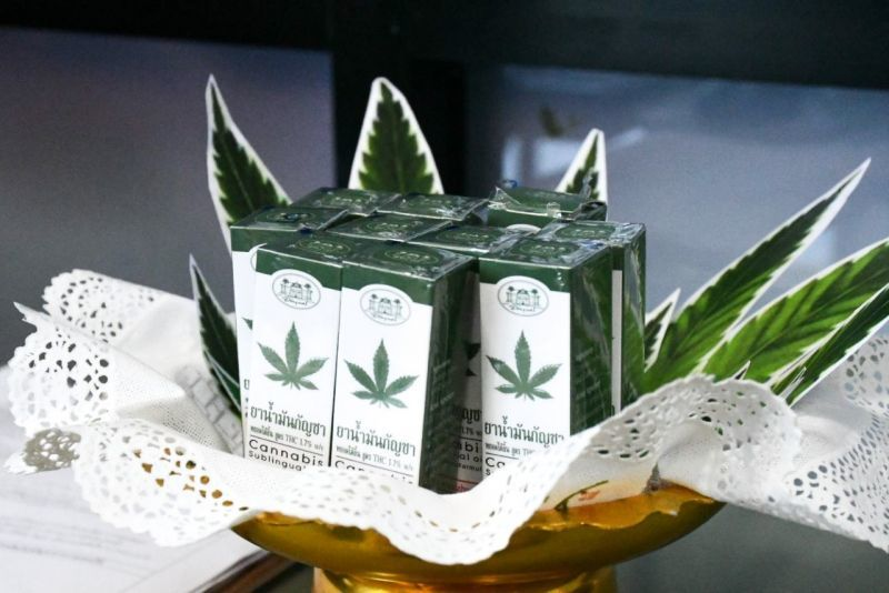 First clinic to offer medical cannabis opens in central Thailand | News by Thaiger
