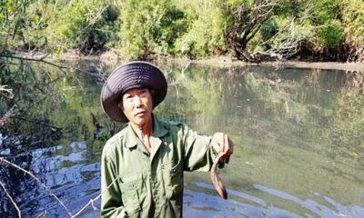 Thừa Thiên Huế: Nhà máy gây ô nhiễm bị xử phạt gần 500 triệu đồng | Thaiger
