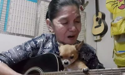 A Thai grandmother, a stroke, four dogs and a cat = musical magic | The Thaiger