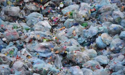 Government confirms 2020 ban on single-use plastic bags | Thaiger