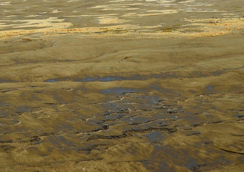 Quảng Ngãi: Nước biển đen, sánh bất thường | News by Thaiger