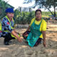 Mother cat and 4 kittens poisoned at Sai Kaew Beach, Phuket | The Thaiger