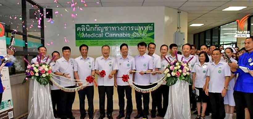 Hospital in Bangkok first to open a specific medical cannabis clinic | News by The Thaiger