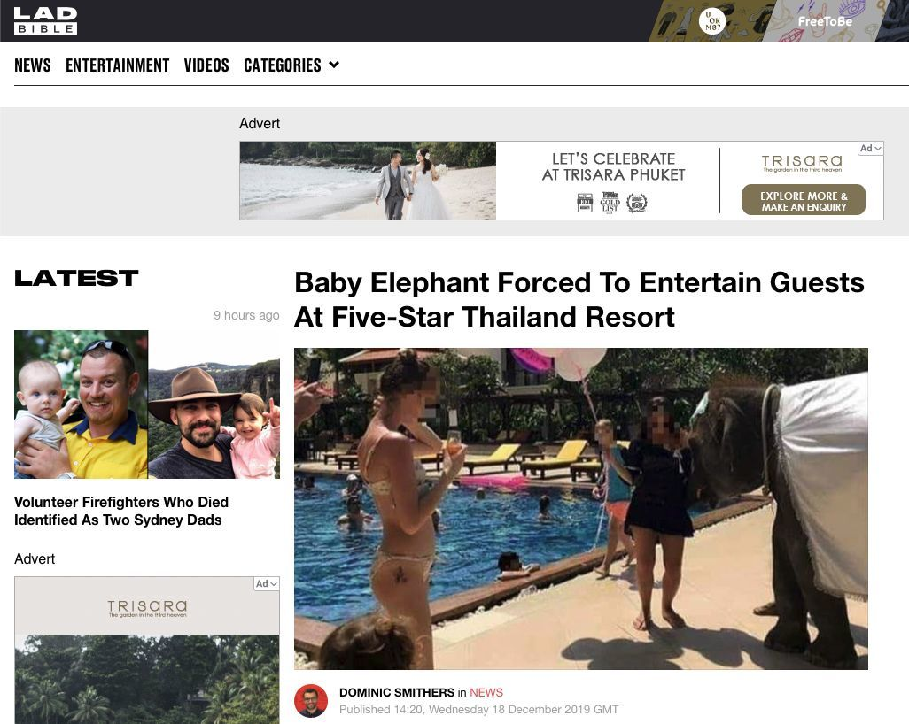 Popular UK website canes Mövenpick Resort in Bangtao, Phuket for its use of a baby elephant to entertain guests | News by Thaiger