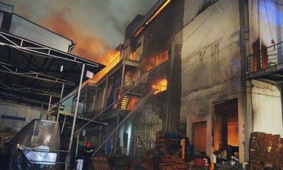 Bình Dương: Công ty bánh kẹo Đại Phát cháy dữ dội | The Thaiger