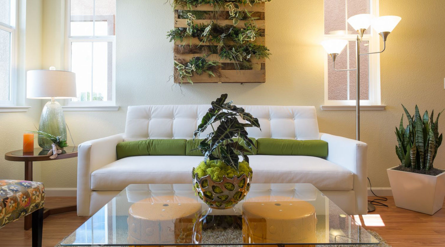 Top 10 Feng Shui master tips to re-organise your home | News by Thaiger