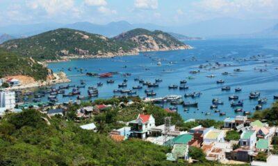 Tràn lan thẻ hướng dẫn viên du lịch giả tại Khánh Hòa   Thaiger