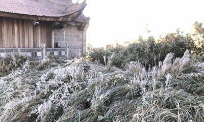 Dự báo thời tiết 7/12: Miền núi rét dưới 0 độ | The Thaiger