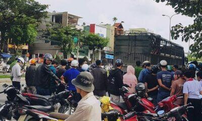 Đà Nẵng: Mẹ bị xe cán trên đường đón con đi học về | The Thaiger
