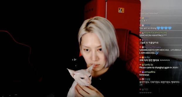 Heechul xác nhận nuôi thú cưng của Sulli   News by Thaiger